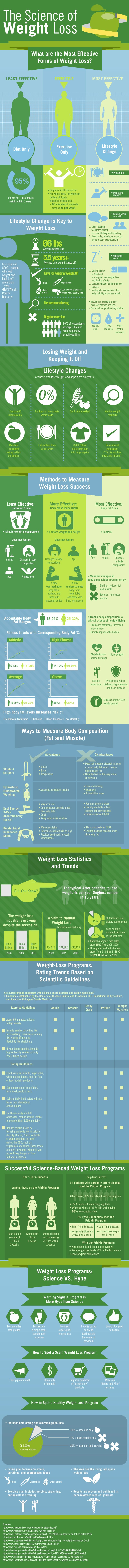 The science of weight loss - infographic