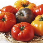 Tomatoes Pritikin Recipe