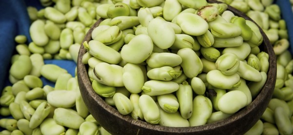 How To Cook Fava Beans | Pritikin Program For Eating Right