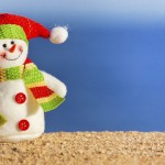 Healthy Holiday Travel Tips from Pritikin