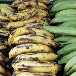 plantains Pritikin Recipe