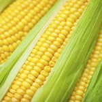 corn pritikin recipe