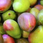 Apple Mango Salsa Pritikin Recipe