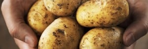 Healthy Potato Recipe