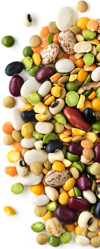 Beans Are An Important Component of this Meal Plan for Lowering Cholesterol